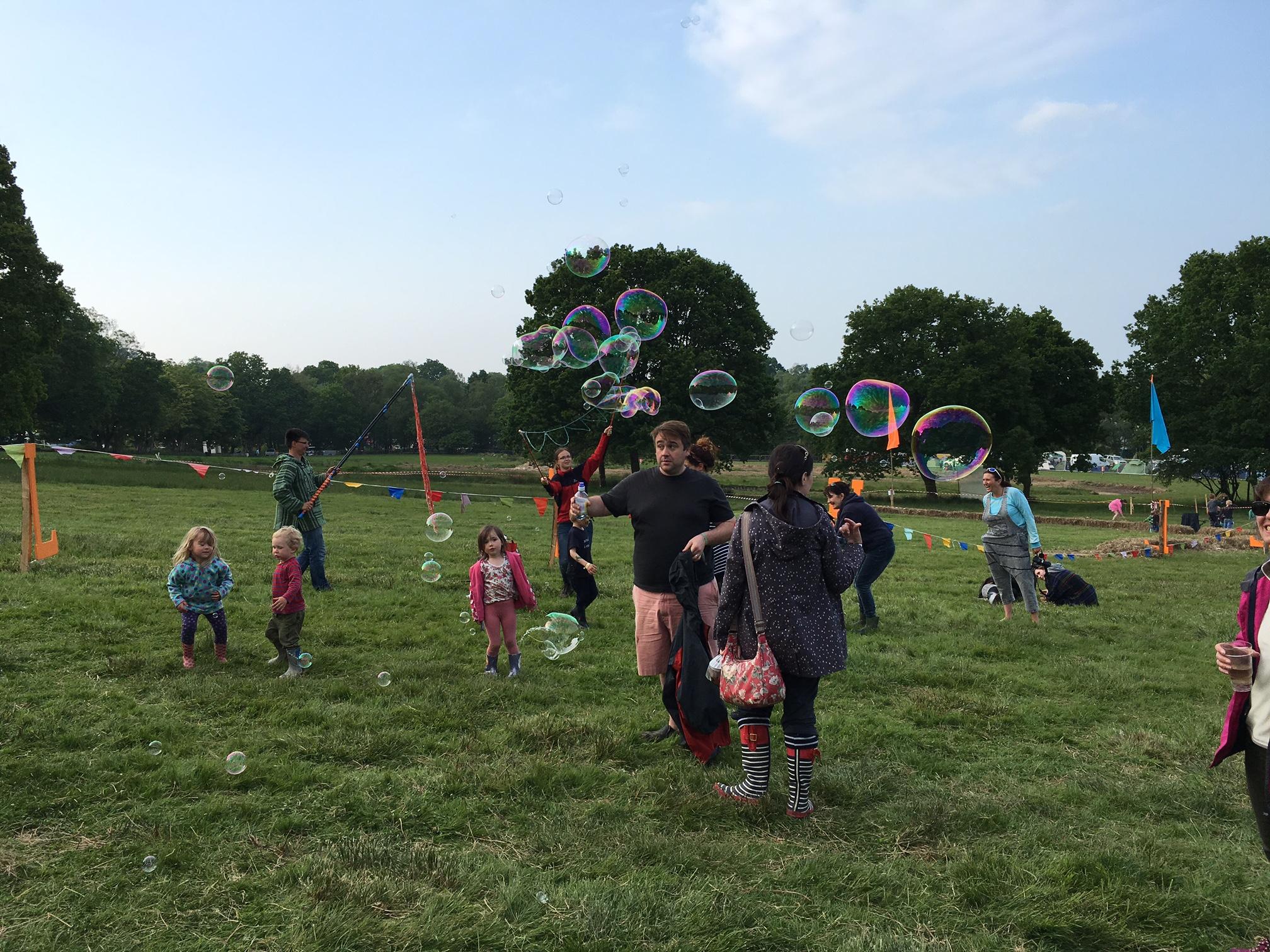 Elderflower Field Festival